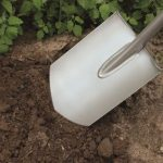 Gardening for beginners what to do